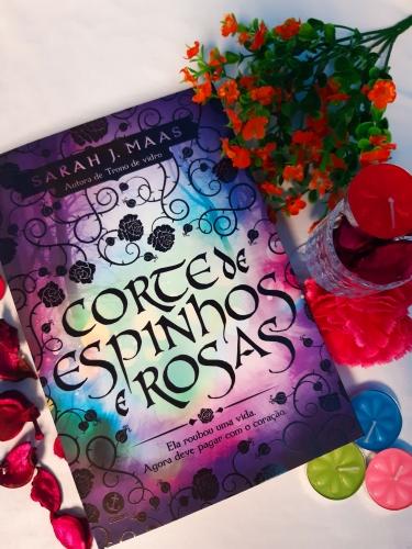 corte de espinhos e rosas, beleza de livros, resenhas, eu amo ler, livros, livros e leitura, editora galera