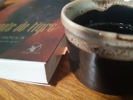 O Resgate do Tigre, Collen Houck, Romance, Livro Collen Houck